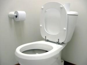 toilet-seat